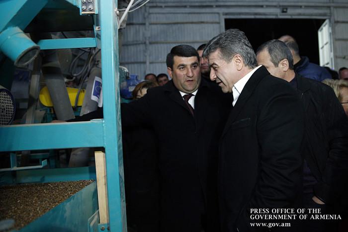 В Армении планируется существенно увеличить производство гречихи