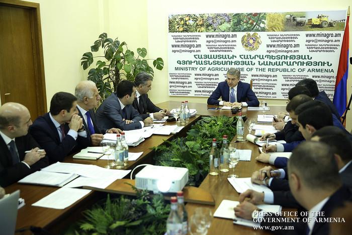 Карен Карапетян поставил перед Минсельхозом цель резко увеличить объемы экспорта вина